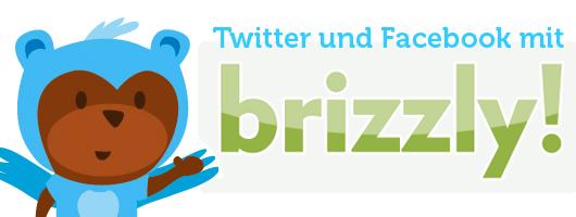 Twitter und Facebook mit Brizzly