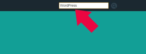 WordPress Suche verbessern