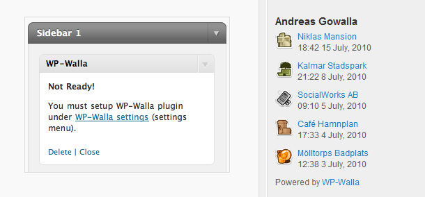 Social Network Widgets