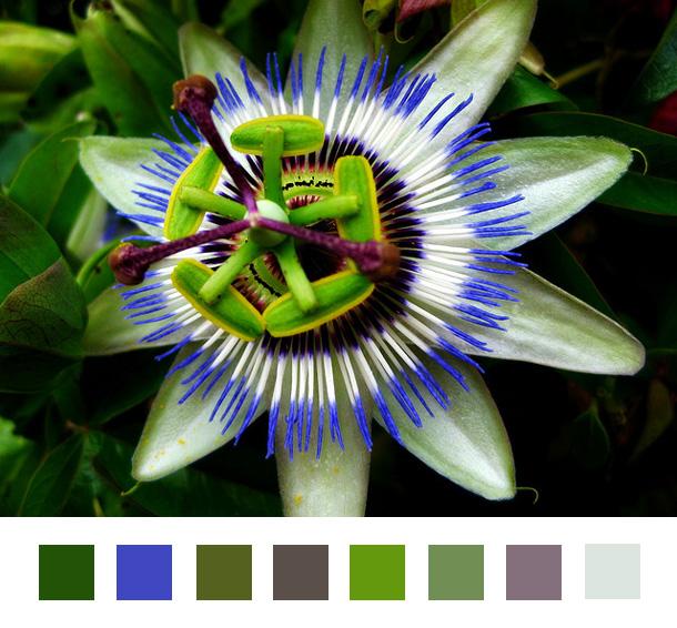 Farben Inspirationen Webdesign