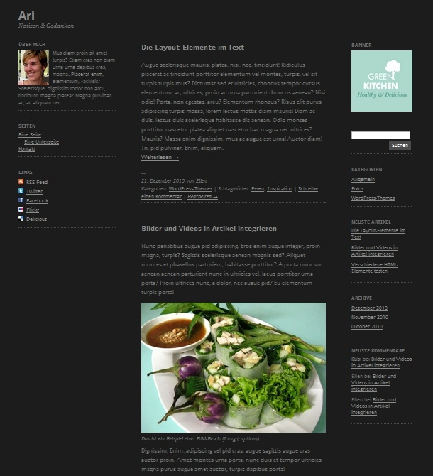 Ari WordPress-Theme