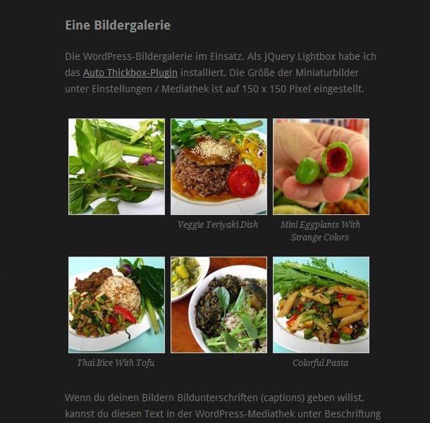 WordPress-Theme Ari mit Bildergalerie