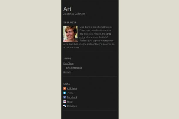 Ari WordPress Theme Updates