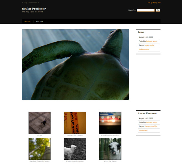 WordPress Themes Fotografie