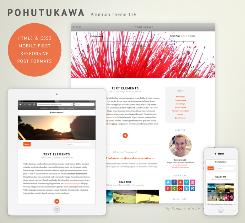 Premium responsive WordPress Theme Pohutukawa by Elmastudio