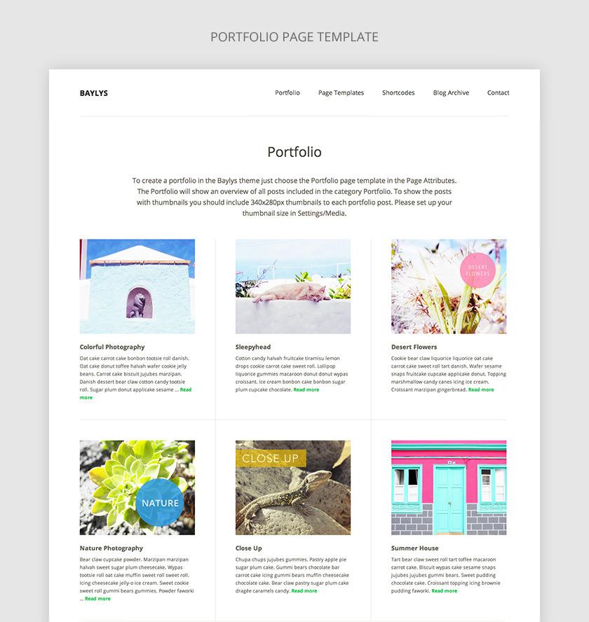 Baylys Portfolio Page Template