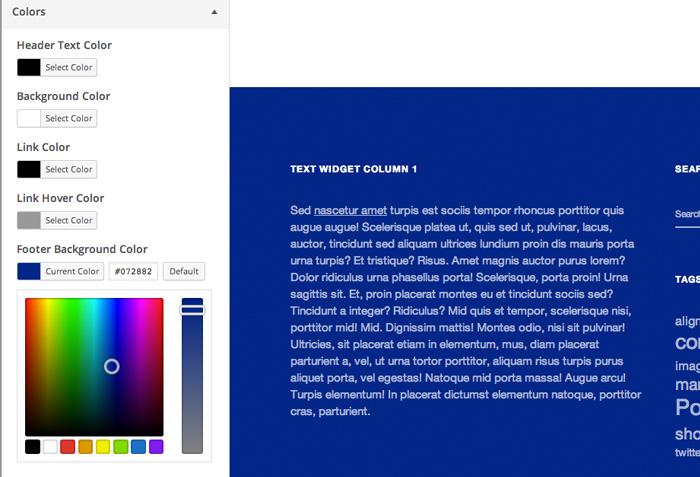 Change your Ubud theme colors easily in the Customizer.