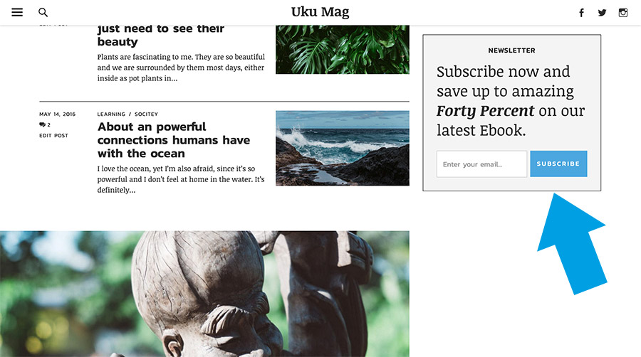 Fix-positioned Mailchimp newsletter widget.