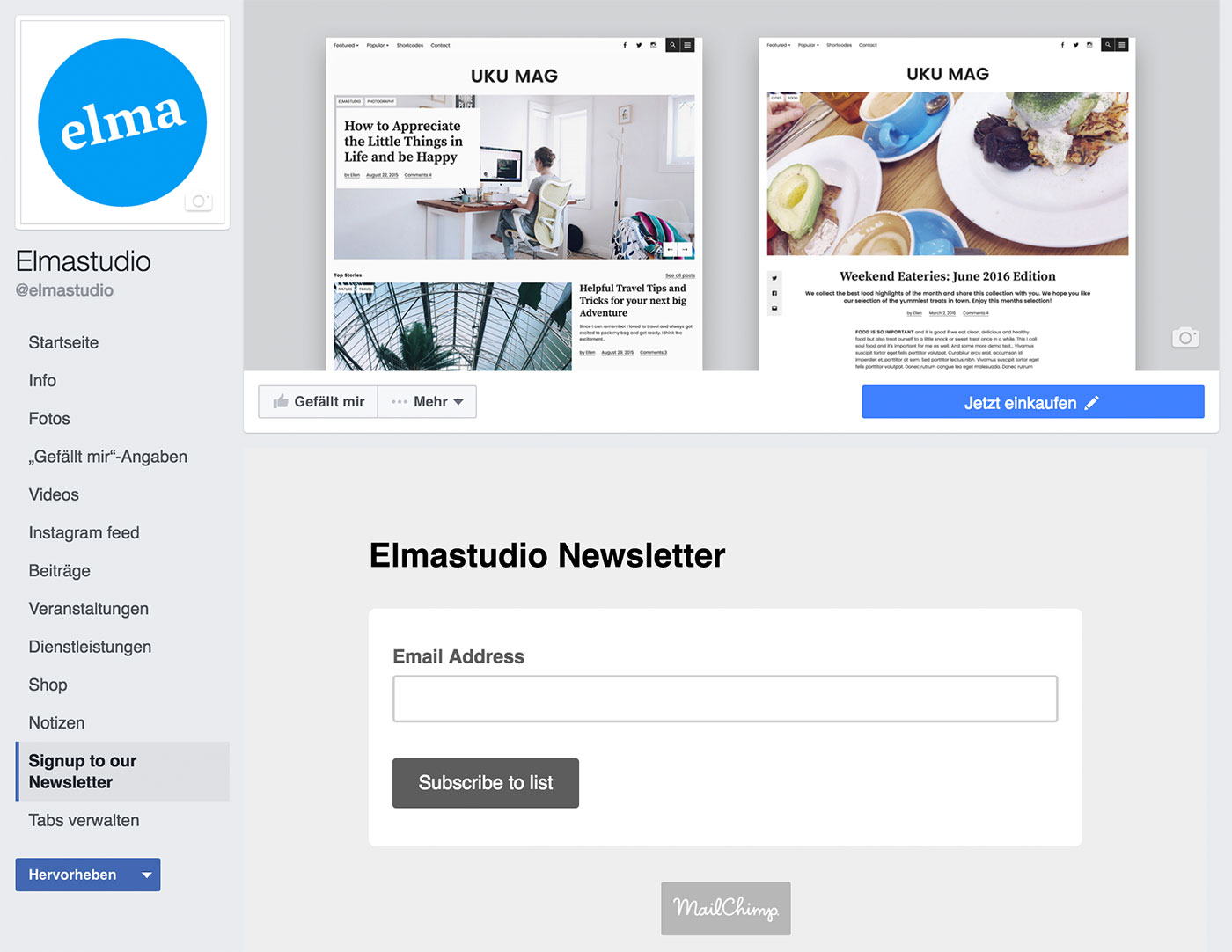 mailchimp-facebook-integration-05
