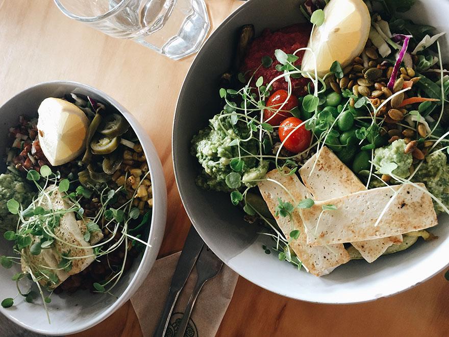 Die Besten Wordpress Rezepte Plugins Für Food Blogger Elmastudio