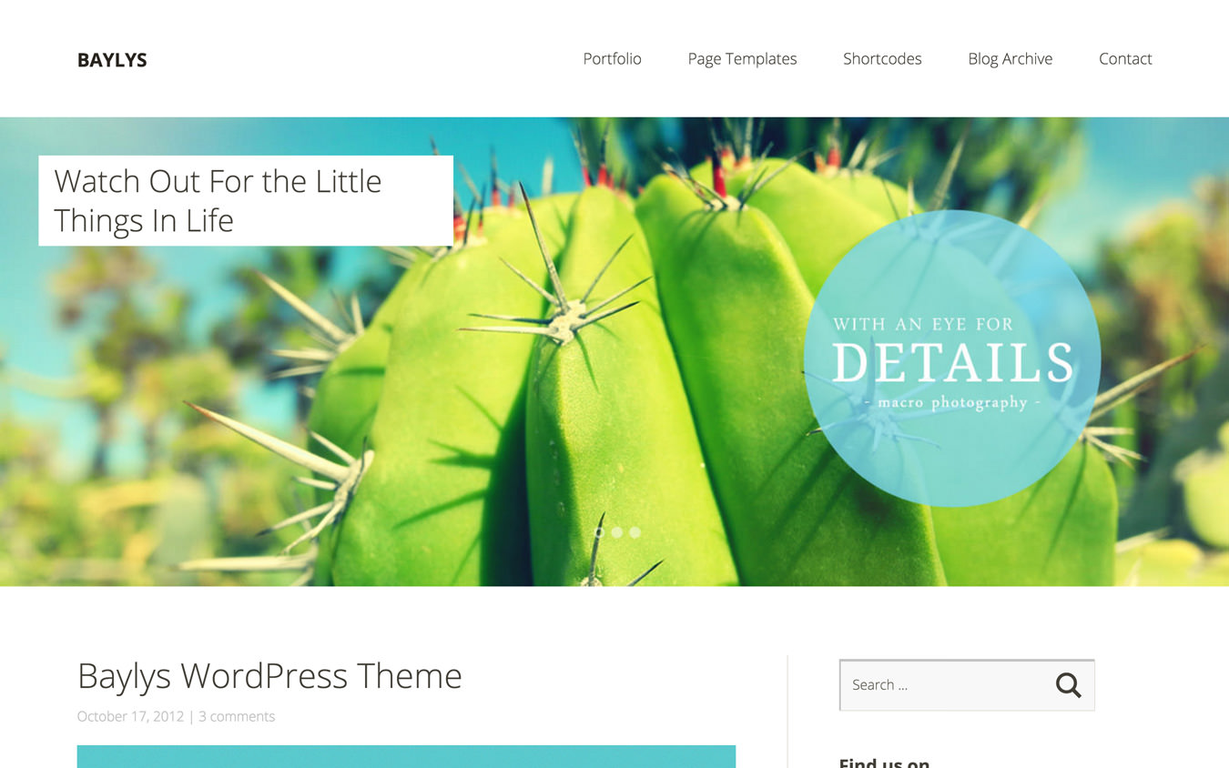 Baylys WordPress Theme