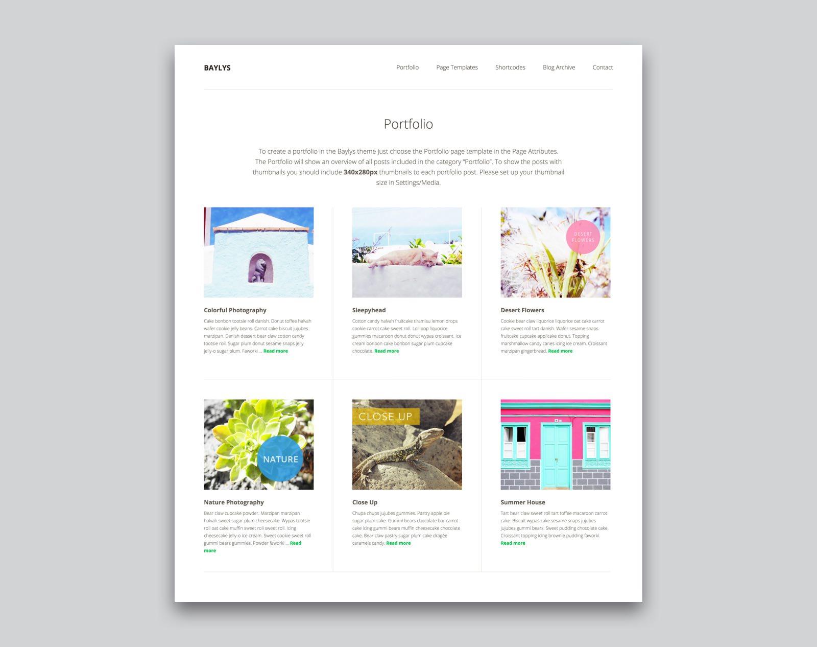 Baylys WordPress Blog Theme