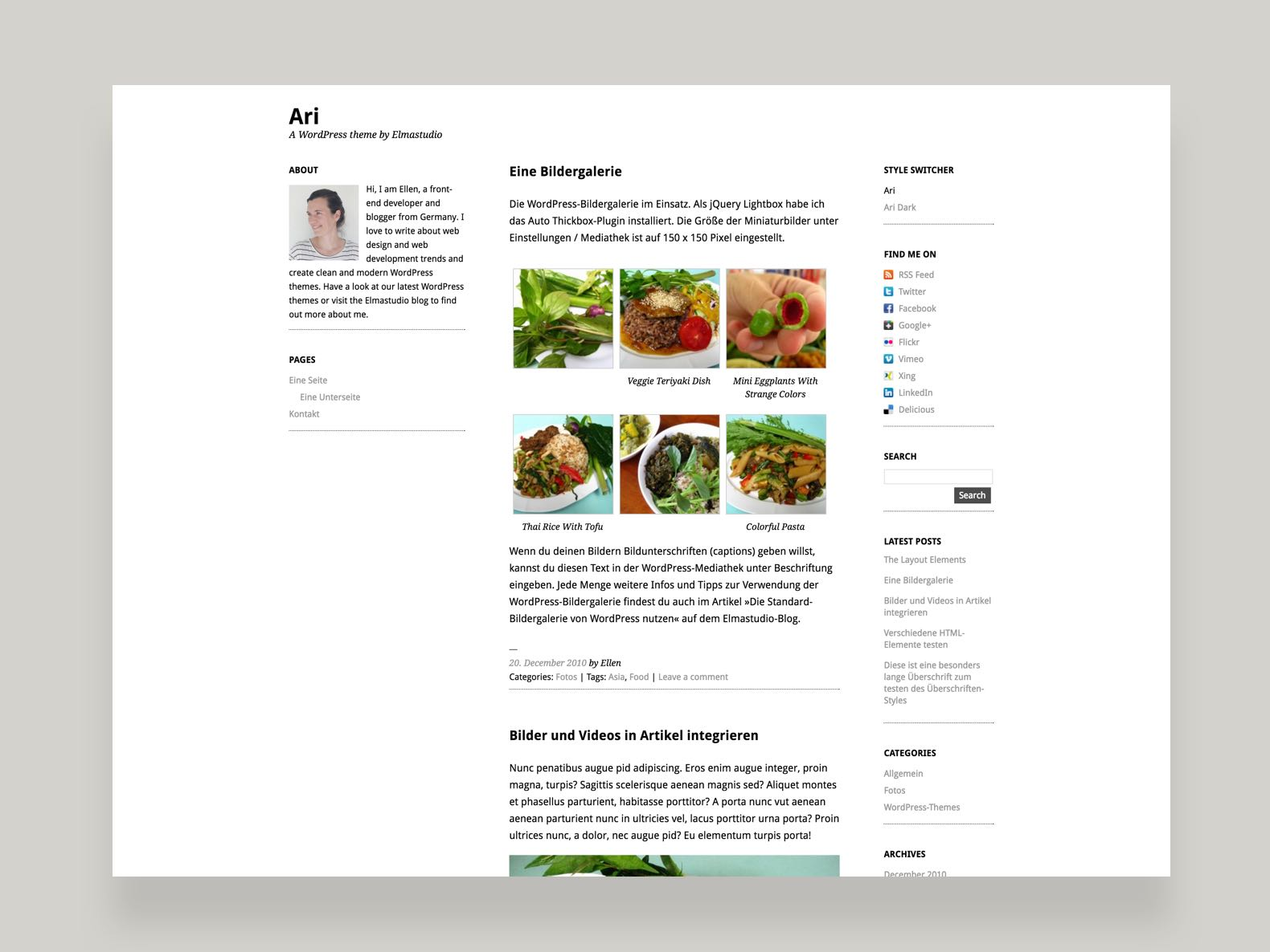 Ari WordPress Blog Theme