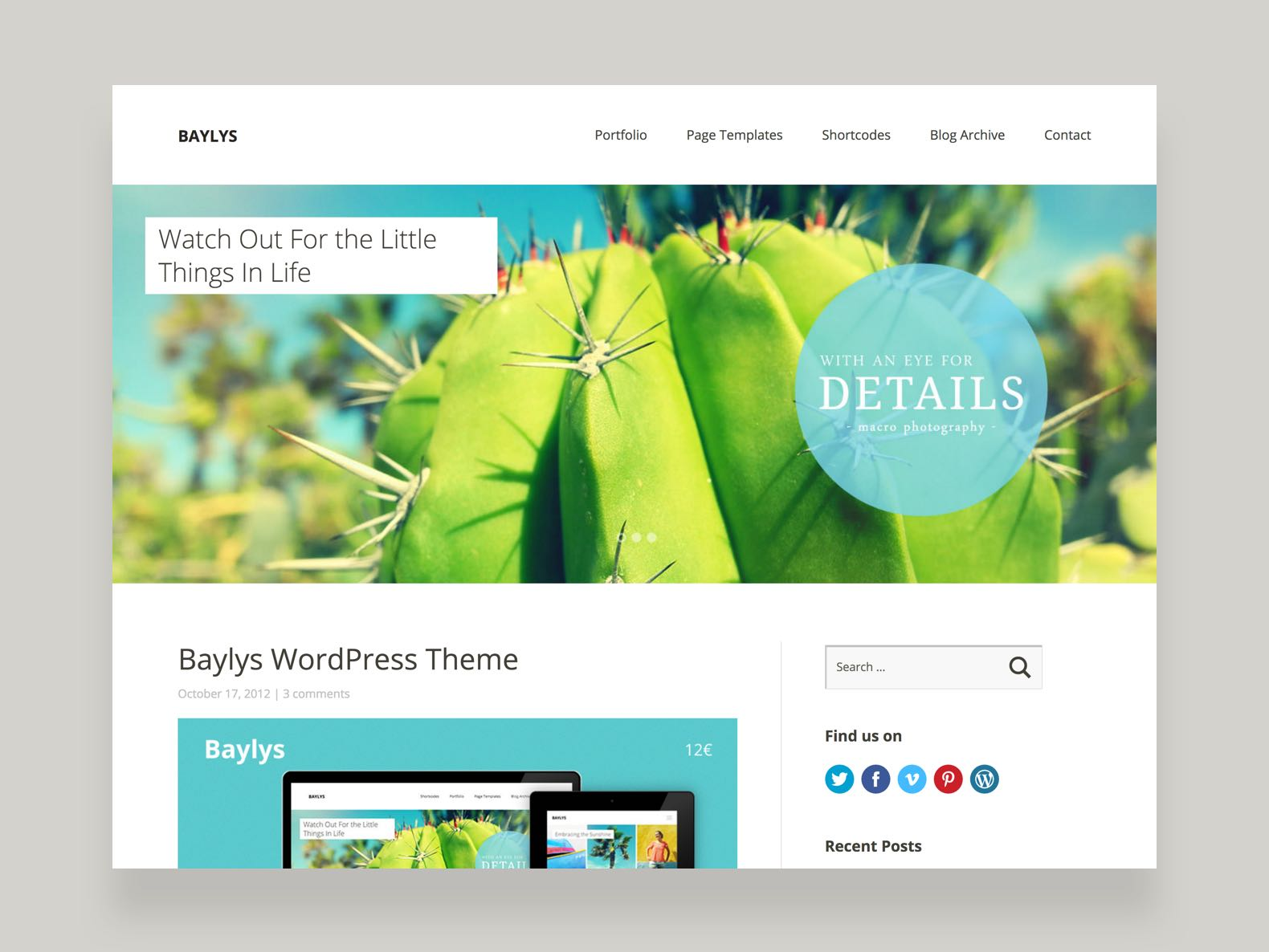 Baylys WordPress Portfolio Blog Theme