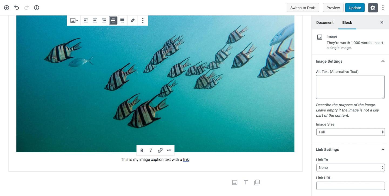 Working with Images in Gutenberg – Elmastudio